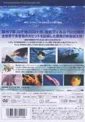 送料無料有/[DVD]/ディープ・ブルー スタンダード・エディション/洋画/TBD-1124