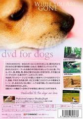 送料無料有/[DVD]/犬のためのDVD/あなたがいないときのために/趣味教養/ECOS-2