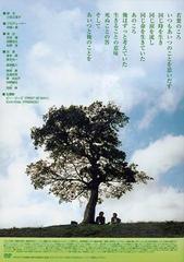 送料無料有/[DVD]/若葉のころ DVD-BOX/TVドラマ/STDS-5035