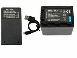 [WELLSKY] Panasonic パナソニック 互換バッテリー VW-VBT380 / VW-VBT380-K 1個 & 超軽量 USB 急速互換充電器 VW-BC10 / VW-BC10-K 1個