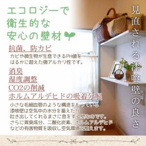 ◎【送料無料】簡単 練り漆喰 [1坪用/畳2枚分]  4.0kg (A436)