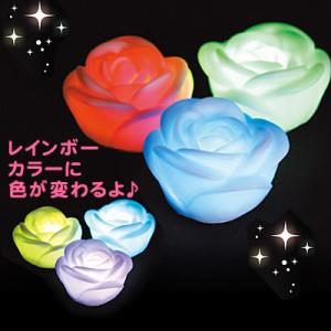 バラ/色が変わるミニライト