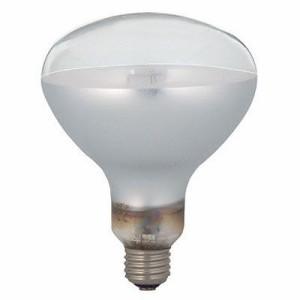 イワサキ アイセルフバラスト水銀ランプ拡散160W(反射形) BHRF100110V160WH