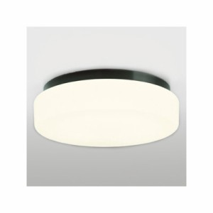 オーデリック 蛍光灯バスルームライト FCL30W 防雨・防湿型 壁面・天井面・傾斜面取付兼用 電球色 OW009384L50HZ