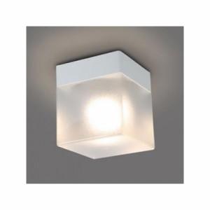 NEC LED浴室灯 防雨・防湿形 電球色 小形電球25W形×1灯相当 天井・壁付兼用 電源端子台付 XM-LE17101-XL