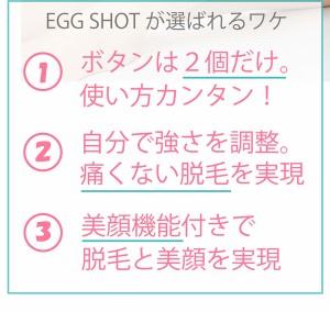 光脱毛器 おまけ付き ホットローラー EGG SHOT エッグショット KINUJO EK001 正規代理店商品 全身 顔 VIO使用可能