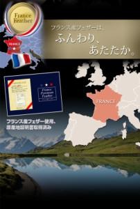 送料無料 フランス産フェザー100%羽根掛布団 掛け布団 (幅サイズ キング)(カラー ラピスネイビー)