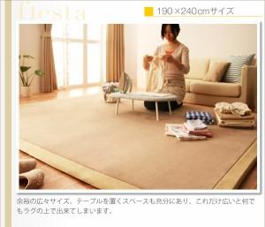 マイクロファイバーラグ・マット・カーペット・じゅうたん・敷き物  厚さ20mmタイプ (幅×高さ 190×280cm)(カラー ベージュ)