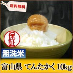 富山県 無洗米 1等米 100% てんたかく 5kg×2袋 平成27年度 【送料無料】 北海道・沖縄・離島は配送不可