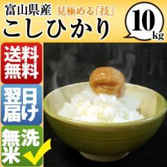 富山県 無洗米 1等米 100% こしひかり 10kg 平成28年度 【送料無料】 北海道・沖縄・離島は配送不可