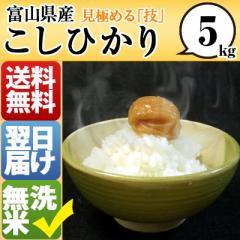 富山県 無洗米 1等米 100% こしひかり 5kg 平成28年度 【送料無料】 北海道・沖縄・離島は配送不可
