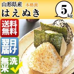 山形県 無洗米  1等米 100% はえぬき 5kg 平成28...