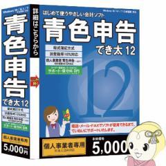 【在庫僅少】WS-DKP12 ウエストサイド 青色申告でき太 12