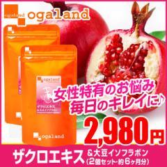 ■即納■お徳用ザクロエキス&大豆イソフラボン(2個セット・約6ヶ月分)3150円以上送料無料 美容ケア 激安 サプリメント
