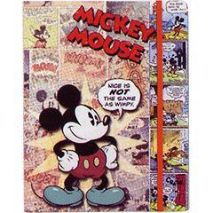 フジカラーアルバムRB64 ミッキーマウス(1コ入)(発送可能時期:3-7日(通常))[映像関連 その他]
