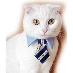 キャットプリン ネクタイシャツ ブルー(1枚入)(発送可能時期:1週間-10日(通常))[猫の洋服]