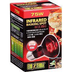 エキゾテラ ヒートグロー 赤外線照射スポットランプ 75W PT2142(1コ入)(発送可能時期:3-7日(通常))[は虫類]