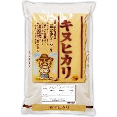 平成28年度産 兵庫県産キヌヒカリ(5kg)(発送可能時期:1週間-10日(通常))[精米]