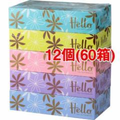 ハロー コンパクトボックス(300枚(150組)*5コ入*12コセット)(発送可能時期:3-7日(通常))[箱ティッシュ]