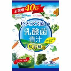 ビフィズス菌入り乳酸菌青汁(3g*40包)(発送可能時期:通常3-5日で発送予定)[青汁・ケール]