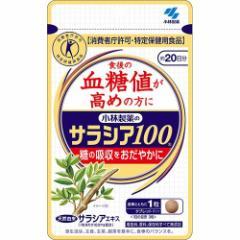 小林製薬のサラシア100(60粒)(発送可能時期:3-7日(通常))[血糖値が気になる方へ]【送料無料】