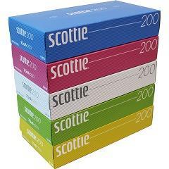 スコッティ ティシュー カラーデザイン ボックス(400枚(200組)*5コ入)(発送可能時期:1週間-10日(通常))[箱ティッシュ]