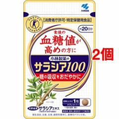 小林製薬のサラシア100(60粒*2コセット)(発送可能時期:通常3-5日で発送予定)[血糖値が気になる方へ]