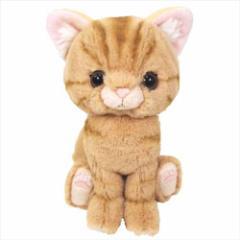 Kitten ぬいぐるみ ぬいぐるみS アメリカンショートヘア/ブラウン ネコ キャラクターグッズ通販