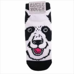 PANDA パンダ 男性用靴下 メンズアンクルソックス 面白雑貨グッズ メール便可