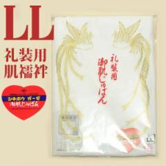 LLサイズ肌着 礼装用肌襦袢 日本製