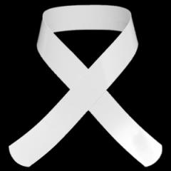 細い衿芯 肌襦袢用衿芯 少し幅の狭いタイプ「白」