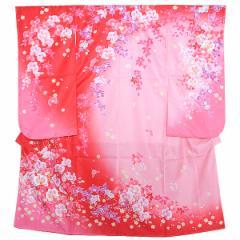 (七五三◆最大20%OFF 12/5 17:59迄)七五三 四つ身着物単品「ピンク×赤色ぼかし 蘭」長襦袢付き 女の子着物 女児着物 七歳 矢車草 [送