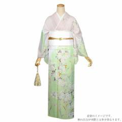 仕立て上がり 訪問着単品「ピンク×グリーンぼかし 桜」パーティー 正絹着物 正絹訪問着 フォーマル 礼装 [送料無料]