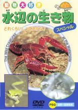 cs::動物大好き 水辺の生き物 スペシャル 中古DVD
