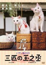 cs::いやし猫DVD 猫侍 三匹の玉之丞 中古DVD あなご さくら(若) さくら(大人) レンタル落ち