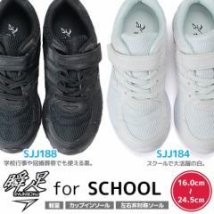 瞬足 シュンソク JJ184 JJ188 白・黒(男の子 女の子)アキレス キッズスニーカー こども 靴 ジュニア キッズ (瞬足jj988 989後継モデル)