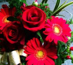 【誕生日 お祝い プレゼント花 13】クリスマス ギフト おまかせ! レッド系 花束  お祝い、誕生日 クリスマス 花