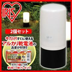 【2個セット】電池式ガーデンセンサーライト ZSL-SEW ブラック/ホワイト+電池付 アイリスオーヤマ