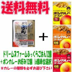 【送料無料】カレーライス 12食セット(レトルトごはん12個+レトルトカレー12個)【イーコンビニ】