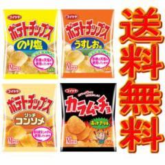 【送料無料】コイケヤ ポテトチップス・カラムーチョ4種 お好み2ケース 24個【イーコンビニ】
