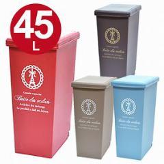 ゴミ箱 ごみ箱 ダストボックス スライドペール 45L ( 分別 )
