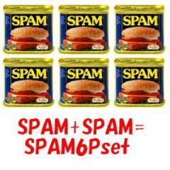 箱無しバラ売り★SPAMスパム缶詰6個ポークランチョンミート【輸入食材 輸入食品】