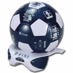 豊天 サッカーボール型 冷温庫 4L AC/DCケーブル付属で家庭、車で使用可能