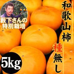 【送料無料】藪下さんの訳あり特別栽培種無し柿5kg/yf(沖縄・離島配送不可)