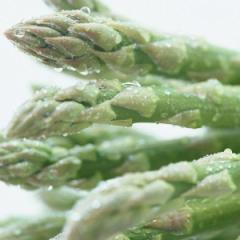 日常の一般野菜 アスパラ 1束