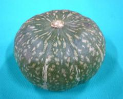 日常の一般野菜 かぼちゃ 南瓜 1玉