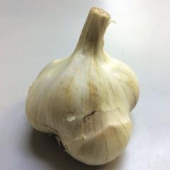 日常の一般野菜 にんにく ニンニク 1個