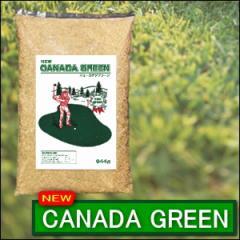 ニューカナダグリーン 約944g NEW CANADA GREEN