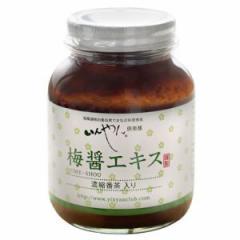 【お買上特典】梅醤エキス 濃縮番茶入り 250g 【いんやん倶楽部】