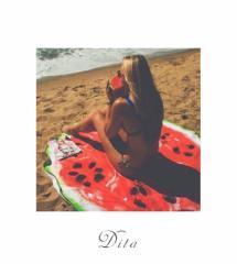 【即納】送料無料 Dita【ディータ】ビーチマット すいか ビーチ ラウンド  ヨガマット 海 プール【ゆうパケット2】